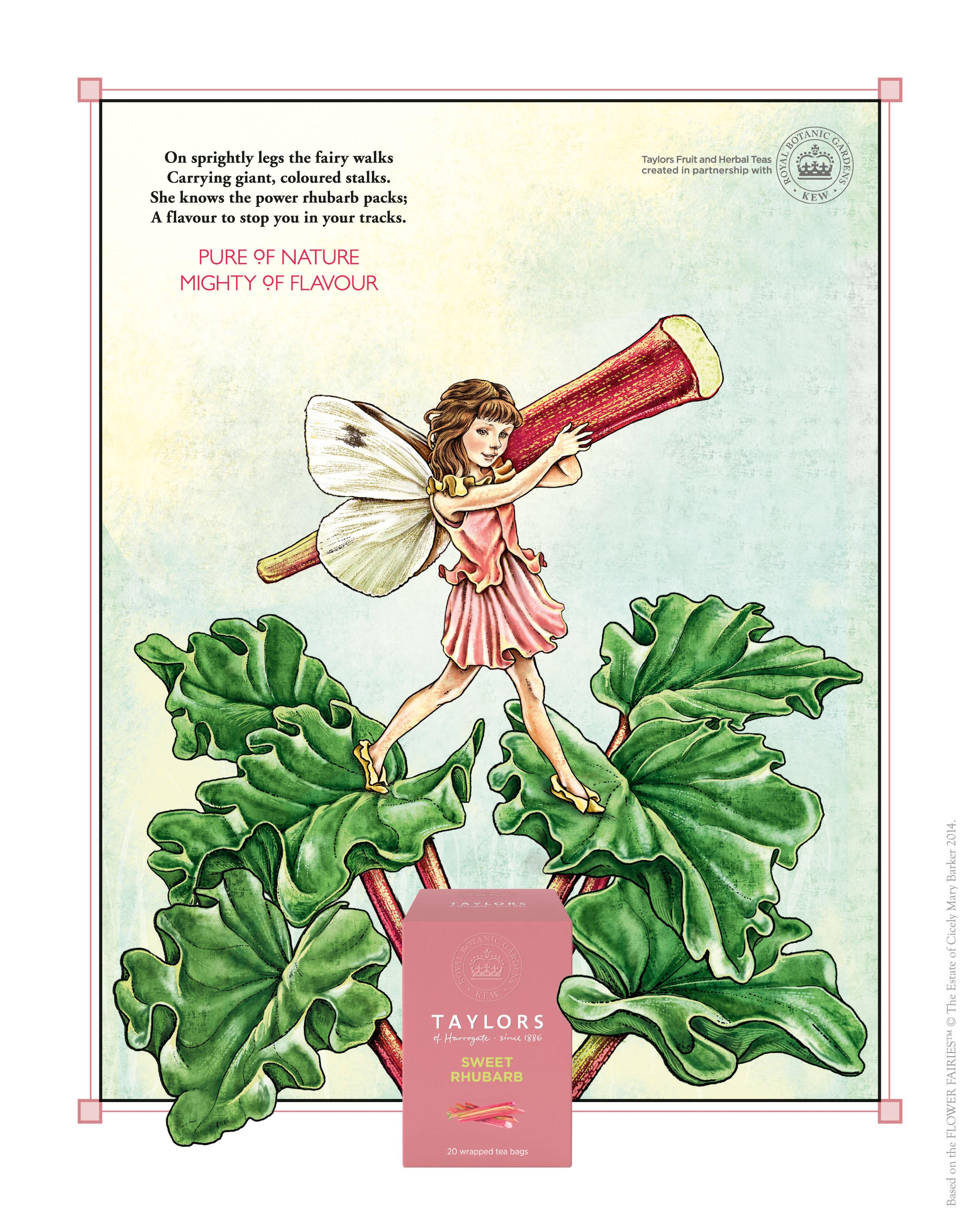 Taylors Rhubarb